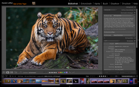 Adobe® Photoshop® Lightroom Workshop
